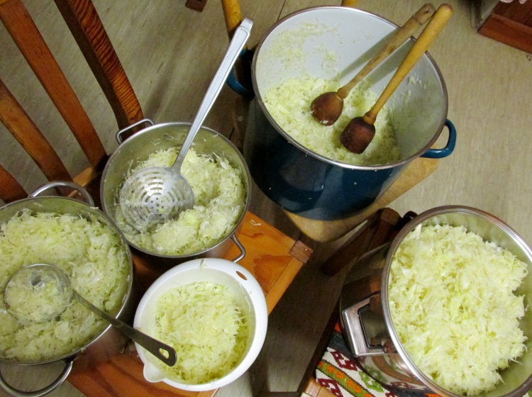Cabbage soup diet plan recipe forumfinder Image collections